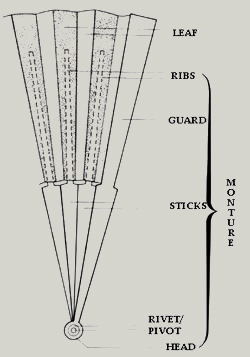 The anatomy of a fan